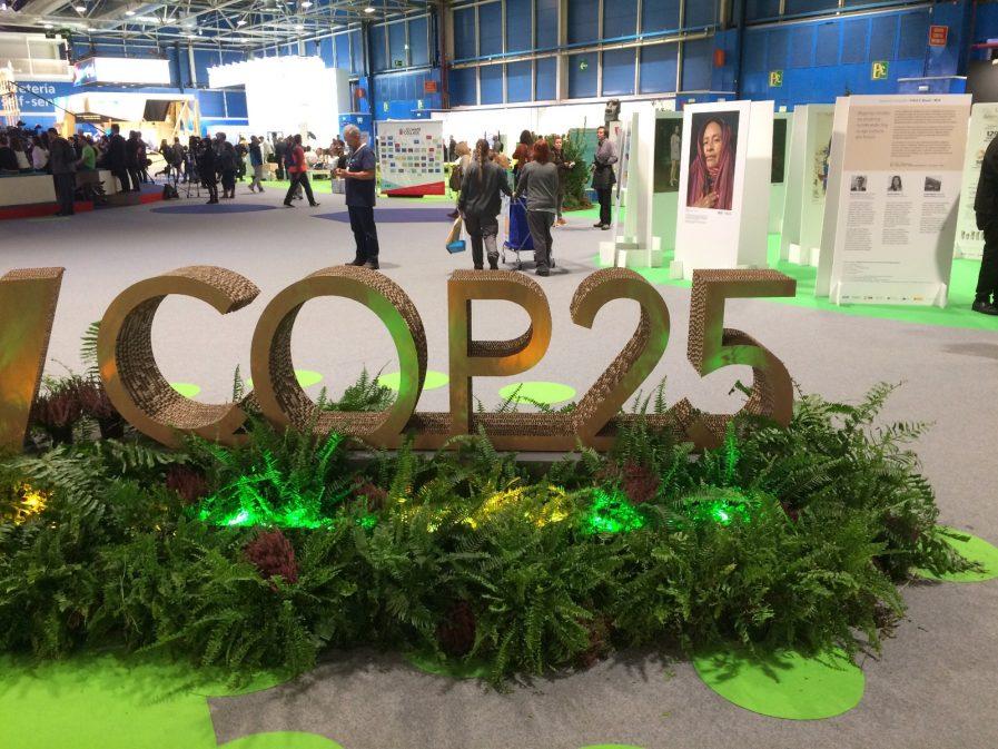 Lisa Badum von der COP25_2
